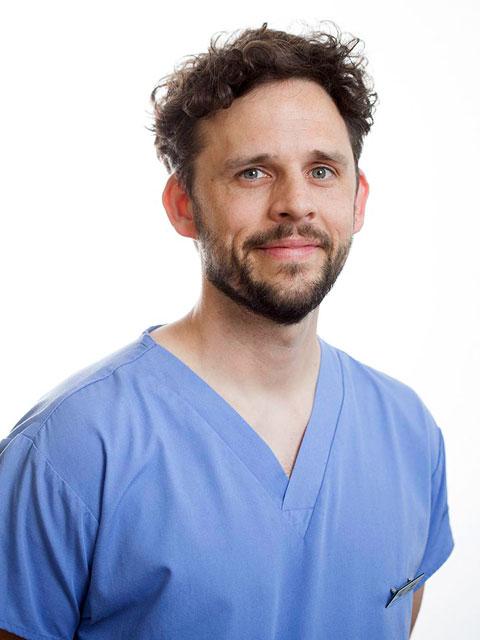 Alex Pollard, Dentist